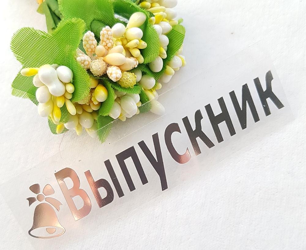 """""""Выпускник"""" термонаклейка металлик серебро 9,2*2,2см"""